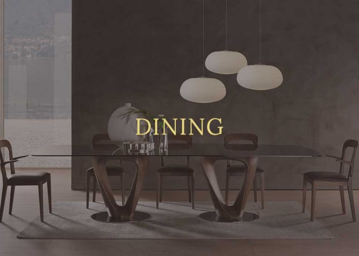 CONTEMP DINING